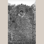 Fig. 13: Gravestone of Sarah Clodfelter, ca. 1813, Bethany United Church of Christ Graveyard, Midway, Davidson Co., NC. MESDA Object Database file D-32541.